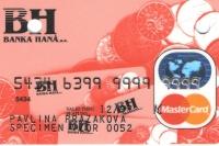 bh_ecmc_standard_mince